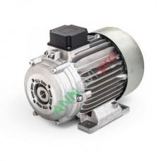Электродвигатель 4,0 кВт с муфтой (MAZZONI)