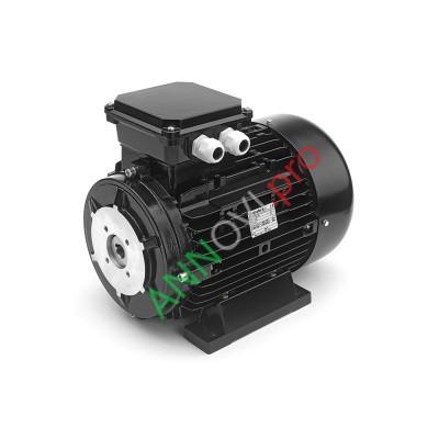 Электродвигатель 4 кВт (NICOLINI)