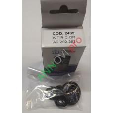 Ремонтный комплект уплотнительных колец для AR 202-252 (арт. 2409)